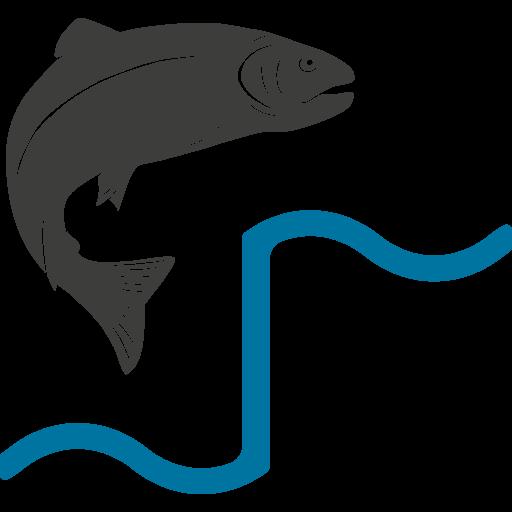 Infoportal Fischwanderung
